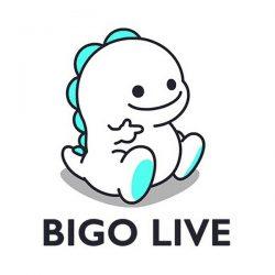 bigio live